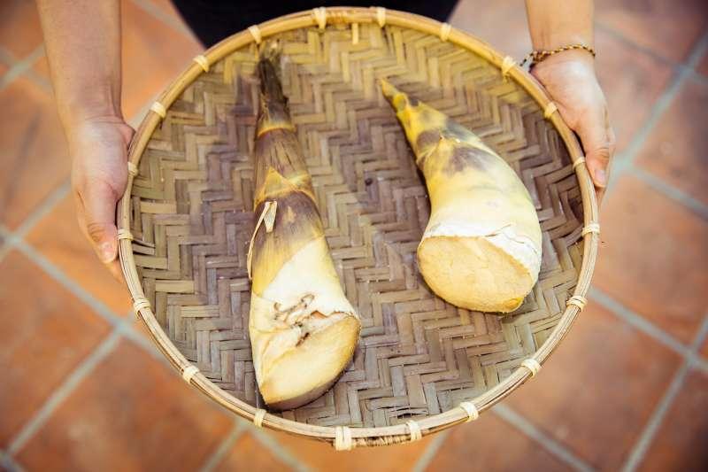「歪腰」的牛角狀是綠竹筍獨有的外表,筍尖如果呈現綠色,表示已產生「紫杉氰醣苷」,所以在選購上一定要注意不見青才能買。 (圖/桂冠提供)