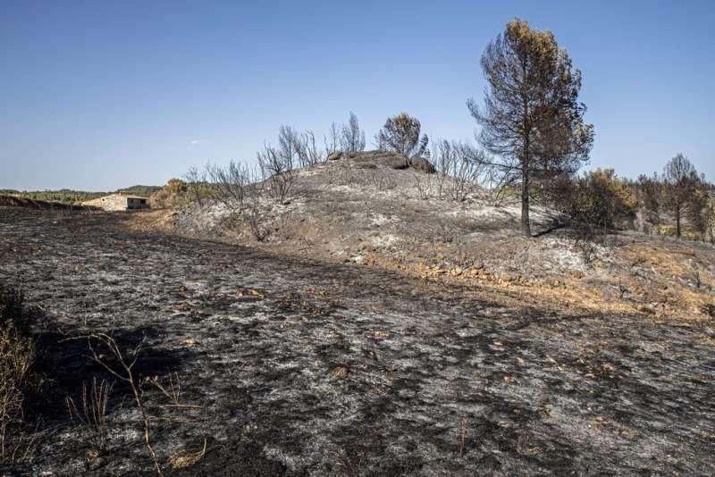 2019年6月,在「地獄熱浪」侵襲下,西班牙境內爆發多起野火災情。(AP)