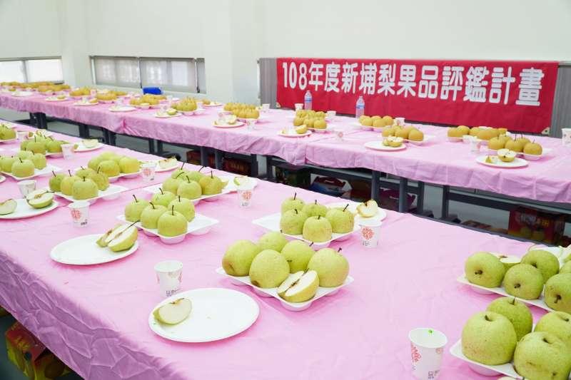 新埔水梨品種相當多樣化,消費者可依個人喜好,品嘗到不同風味、口感水梨。(圖/新竹縣政府提供)