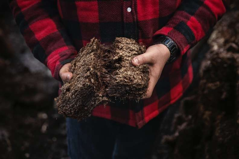 濃重煙燻風味的泥煤,是許多威士忌玩家愛不釋手的元素(圖 / Howard Yu提供)