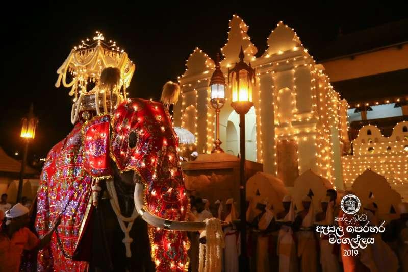 斯里蘭卡佛教「聖牙節」慶典,傳出大象瘦到皮包骨仍被迫載人遊行。(取自Kandy Esala Perahera 2019 粉絲專頁)