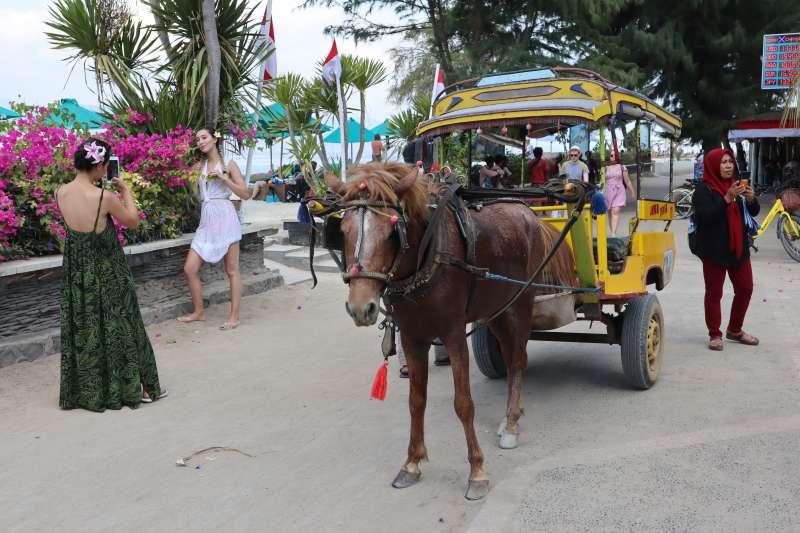 印尼吉利群島禁止汽機車進入,馬車是探索德拉望安島的重要交通工具。(蔡娪嫣攝)