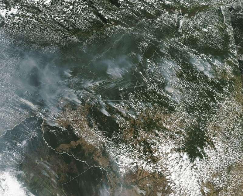 NASA提供的衛星資料顯示,「地球之肺」正遭野火肆虐。(AP)