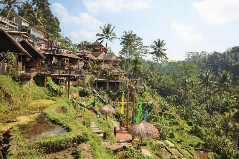 峇里島「德哥拉朗梯田」有整排依山而建的咖啡館、餐廳。(蔡娪嫣攝)