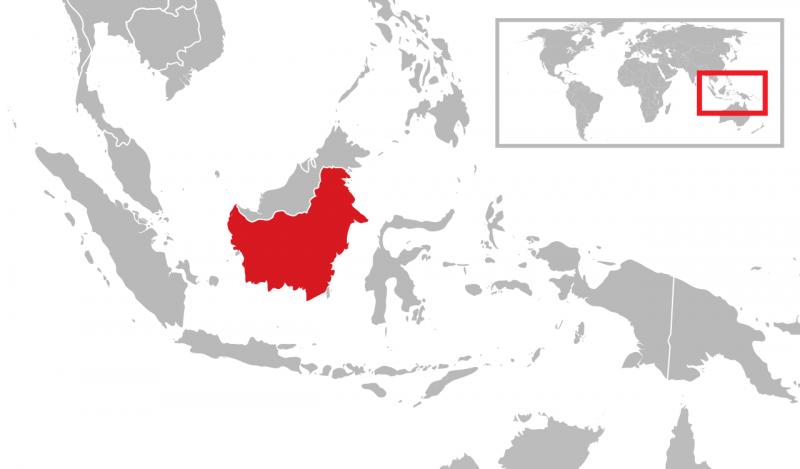 加里曼丹島地理位置。(Gunkarta@Wikipedia/ CC BY 3.0)