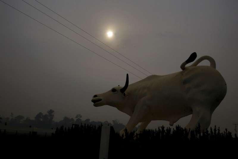 雨林大火煙霧讓巴西多處暗無天日。(美聯社)