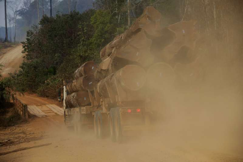 博索納羅上任後鼓吹投資雨林,為採礦業、伐木業及農牧業敞開大門。(美聯社)