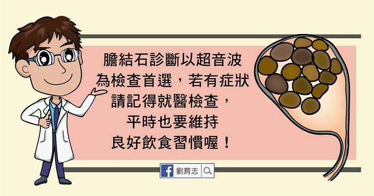 膽結石懶人包。(圖/照護線上提供)