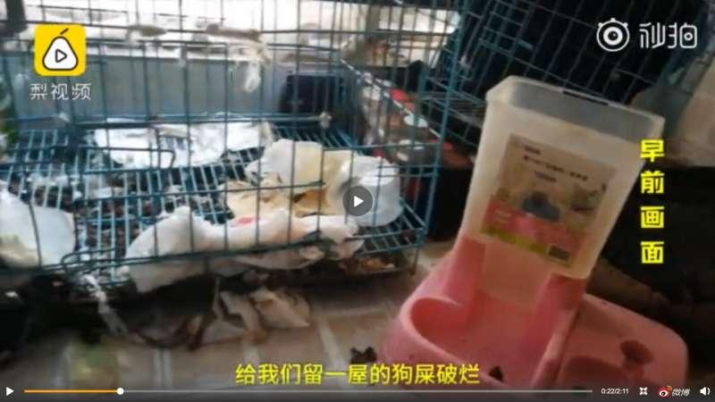 中國女網紅李艾佳在西安租屋處環境髒亂。(翻攝自「梨視頻」微博)