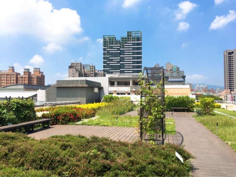 新光國小綠屋頂。(圖/徐炳文攝)