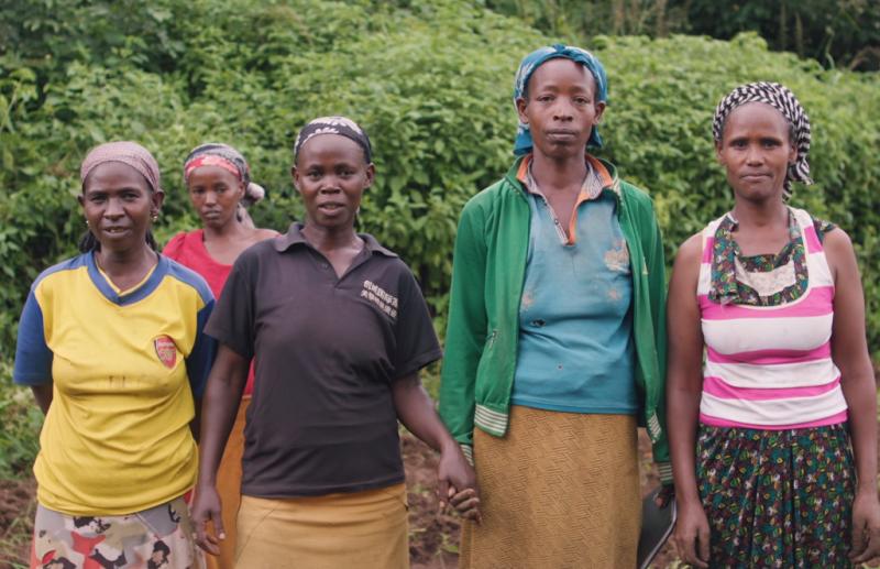 阿瑪茲和村裡的其他女性一起在公有地上種植一片森林。(圖片擷取自Youtube)