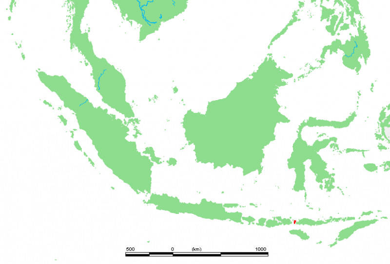 科莫多島地理位置圖。(圖/Public Domain@wikipedia)