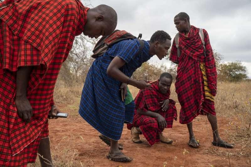 佩特羅與他的團隊走訪馬賽草原,在草原路面上探測獅子蹤跡。(AP)