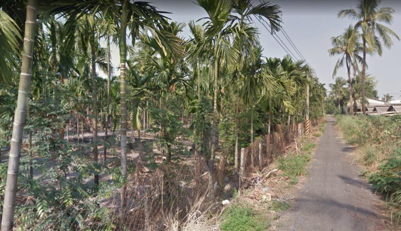 20191023-台糖為了配合政府2025年太陽光電設置容量20GW目標,準備將提供1.2萬公頃「平地森林」,作為民間業者太陽光電設置場。圖為台糖建功農地。(取自google地圖)