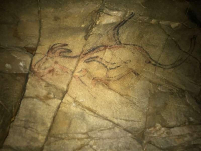 三藍之洞內一萬年前新石器時代岩畫,紅琥珀色的黑尾野山羊。(海中雄提供)