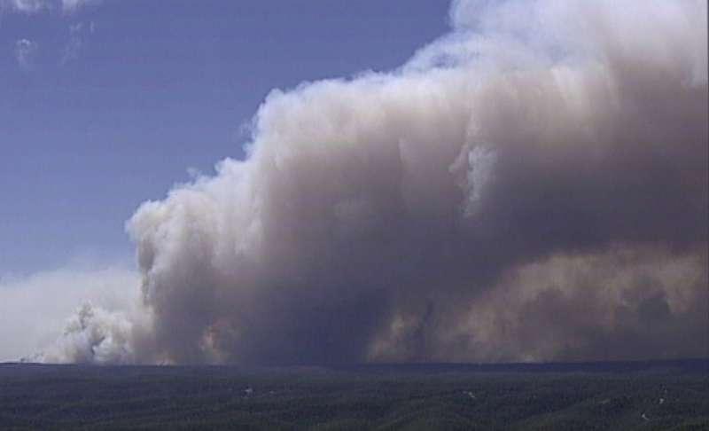 新南威爾斯哥斯伯斯山地區的野火,造成可觀的濃煙。(美聯社)