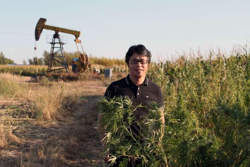 中國工業大麻新創企業天之草的副總裁李凌表示,黑龍江是北部省份,氣候更適合種植用於紡織品生產的工業大麻。 圖片來源:STEPHANIE YANG/THE WALL STREET JOURNAL