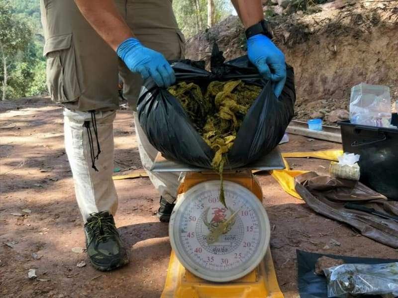 泰國一隻野鹿葬身國家公園內,解剖後發現牠胃裡塞滿7公斤重的塑膠垃圾。(取自泰國國家公園、野生動物和植物保存局臉書)