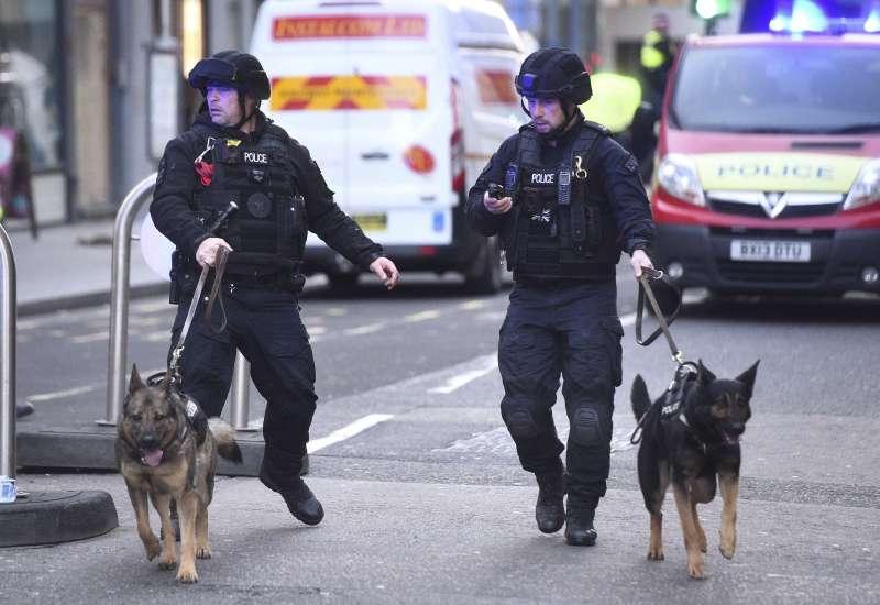 2019年11月29日,英國倫敦橋發生恐怖攻擊案,警方派出警犬搜索是否殘留爆裂物。(AP)
