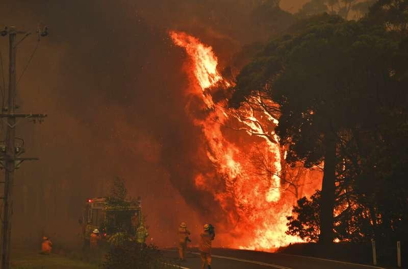 澳洲東部野火燃燒不盡,新南威爾斯州 (New South Wales)19日宣布未來一周進入緊急狀態。(AP)