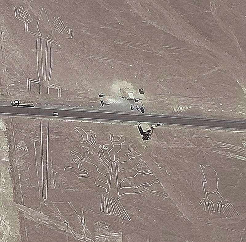 搭小飛機看到的瞭望台圖案。(左蜥蜴、中樹、右手)。(圖/玉山社)