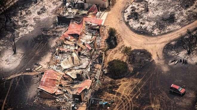 澳洲野火肆虐,造成巨大生命財產損失。(圖/BBC News)