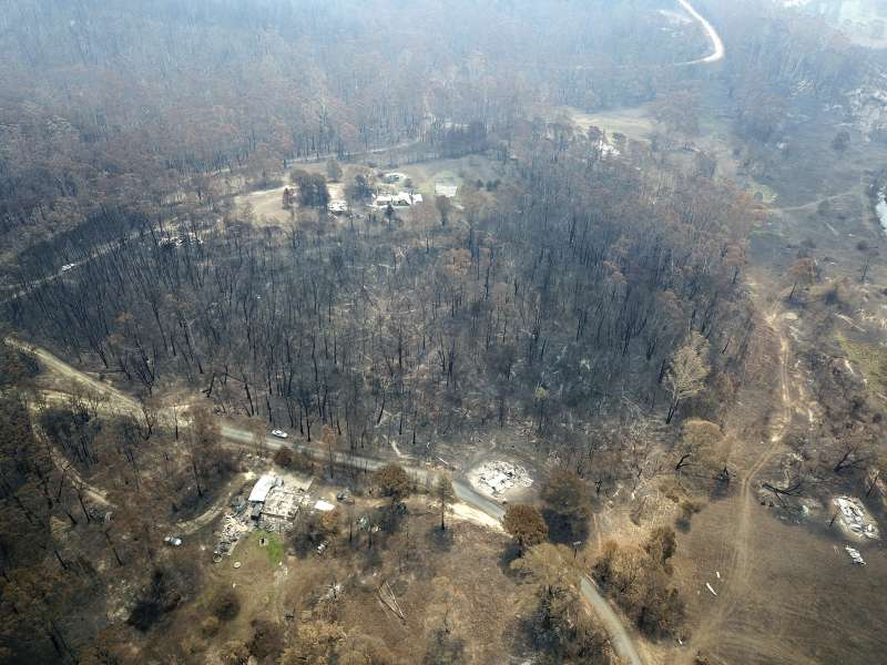澳洲野火延燒數月,不僅燒毀山林房舍,許多野生動物的棲地也遭破壞。(美聯社)