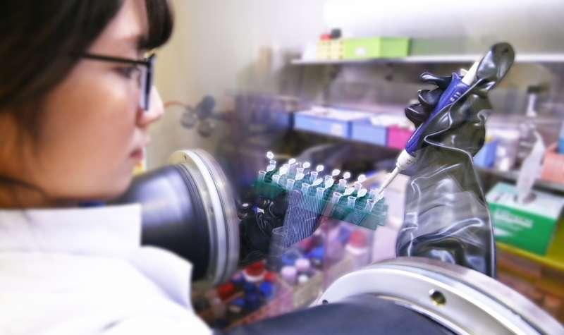清華跨域研究團隊開發出可使腫瘤血管正常化的一氧化氮奈米載體。(圖/清華大學提供)