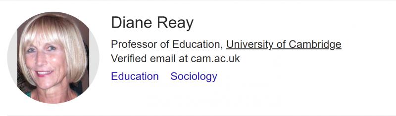 蕾伊(Diane Reay)是一位社會學家和學者,同時也是劍橋大學的教育學教授,因對英國公立學校學生教育不平等的研究而聞名。(截取自Google Scholar)
