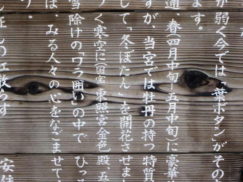 20200131-日文示意圖。(資料照,取自維基百科)