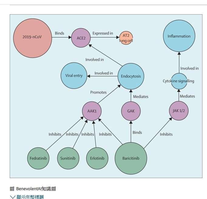 20200208-研究團隊取得武漢肺炎病毒基因序列,並透過該公司建置的相關相關病毒蛋白基因分子模組,在現有藥物中尋找可以擊敗武漢肺炎病毒的答案。(取自《刺胳針》網站)