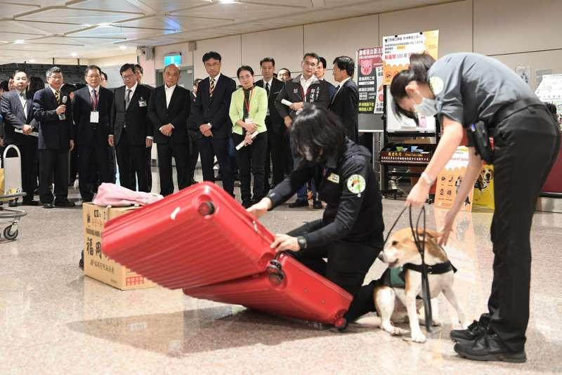 蘇貞昌回鍋上任閣揆的第一天便視察桃園機場,力求將非洲豬瘟疫情防堵在國門外。(行政院提供)