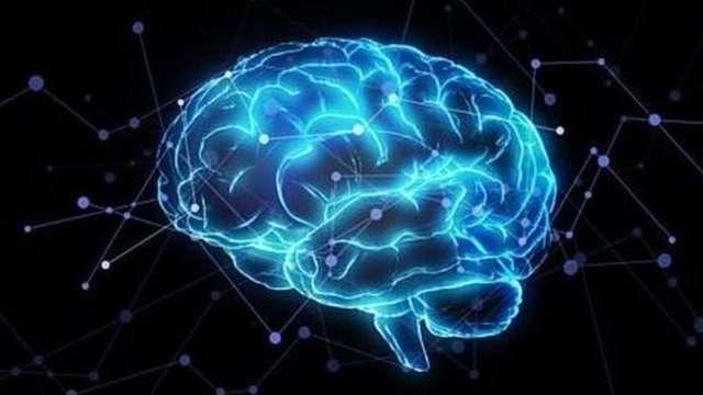 1大腦中神經複雜,稍不注意就會傷及神經,影響人的語言和肢體等一系列行為。(圖/BBC News)