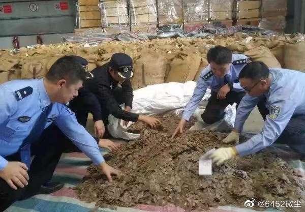 中國浙江日前查獲逾10噸穿山甲鱗片(微博)