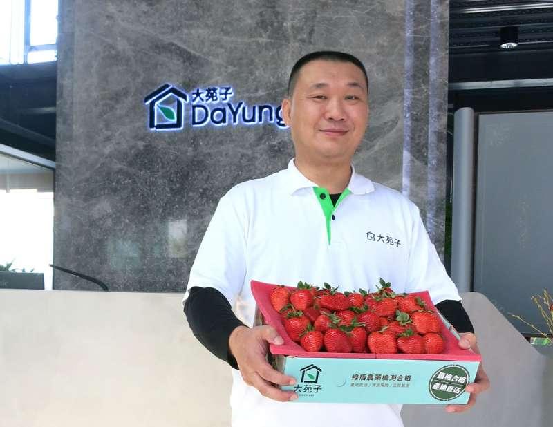 邱瑞堂在手搖飲店賣草莓,吹起一陣旋風。(林哲良攝)