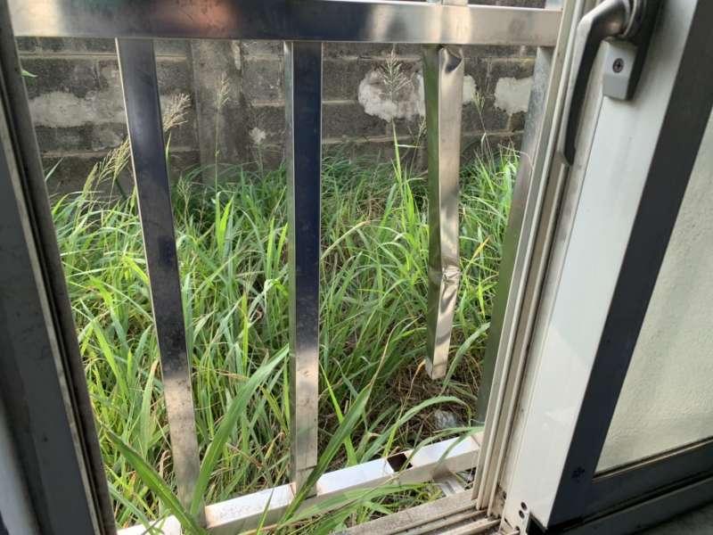 20200324-海巡署日前在屏東小琉球外海一舉查獲31名越南籍偷渡客,昨夜卻驚傳有6人逃脫。圖為逃逸偷渡客破壞留置室窗戶。(海巡署偵防分署提供)