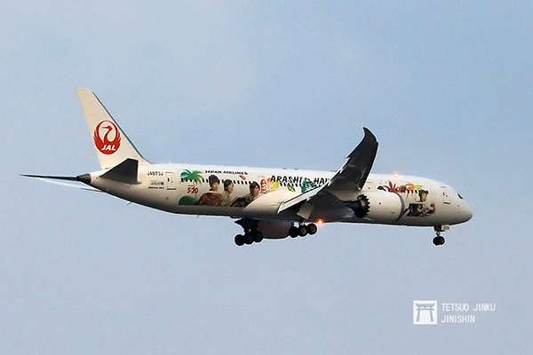 睽違三年再度推出的第五代「JAL嵐JET」,這次改為國際線版本,除了飛航夏威夷航線之外,偶而還會飛往台北松山,吸引不少台灣的迷妹們前往拍照。(攝影:陳威臣)