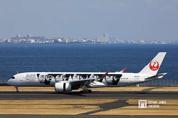 為紀念ARASHI出道20週年,以及2020年為「JAL嵐JET」推出10週年,因此日本航空再度推出國內版也是第六代彩繪機,採用兩側不同塗裝,其中左側是ARASHI成員望向未來的意象。(攝影:陳威臣)