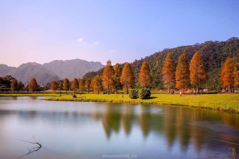 宜蘭蜊埤湖有優美的落葉松和湖景。(圖/IG@vincent725_tw授權提供)