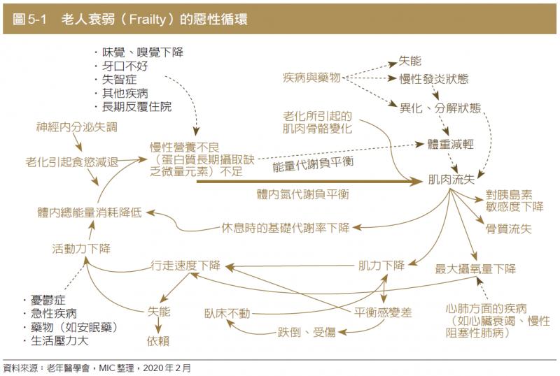 圖為老人衰弱(Frailty)的惡性循環。(圖:商周出版)