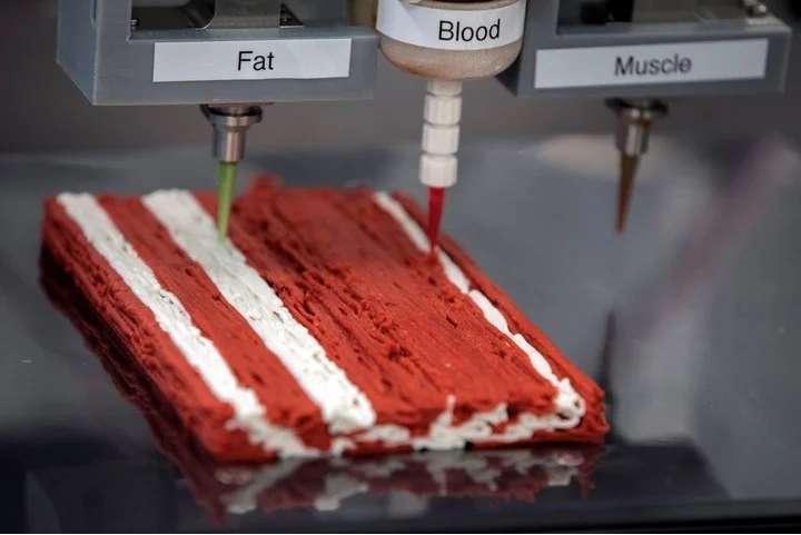 Redefine Meat 公司3D 打印肉模型. 圖片來自:theglobeandmail。(圖/愛范兒提供)