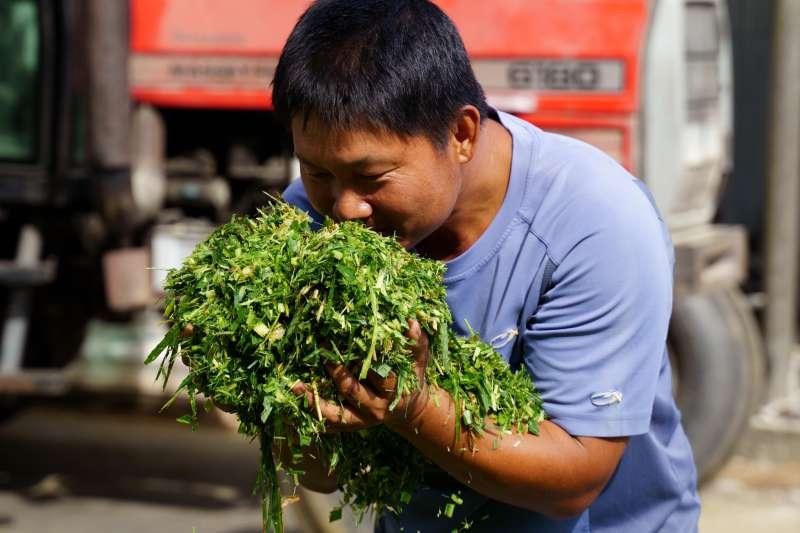 廖皎邦希望透過周邊農民種植的牧草促進地方共榮。(圖片來源:張家琪提供)(圖/食力foodNEXT提供)