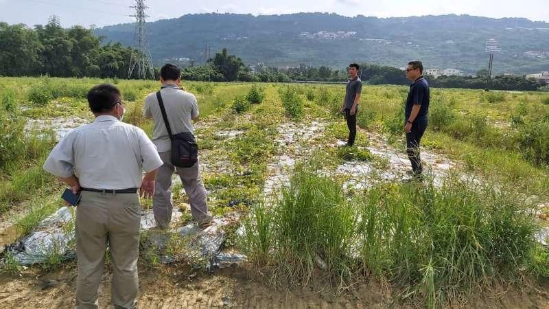 農業局即於今日召集農糧署、改良場組成勘災小組,積極確認各項作物災損。(圖/徐炳文攝)