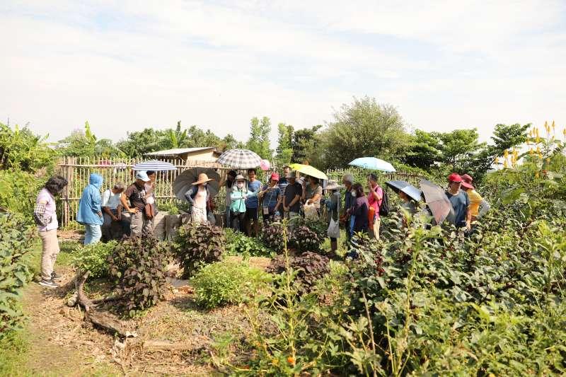 20200915-民眾參觀新竹市非農地雜草示範地(新竹市政府提供)