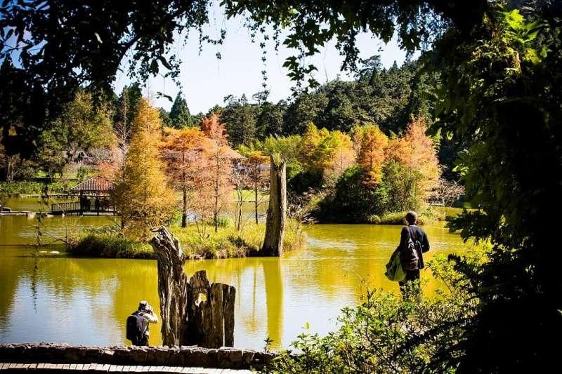 高山湖泊景點推薦-宜蘭明池森林。(圖/Tripbaa趣吧!自由行專家)