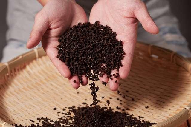 圖二、高家老菜脯推出養生茶包,即沖即飲更方便。(圖/高家老菜脯提供)