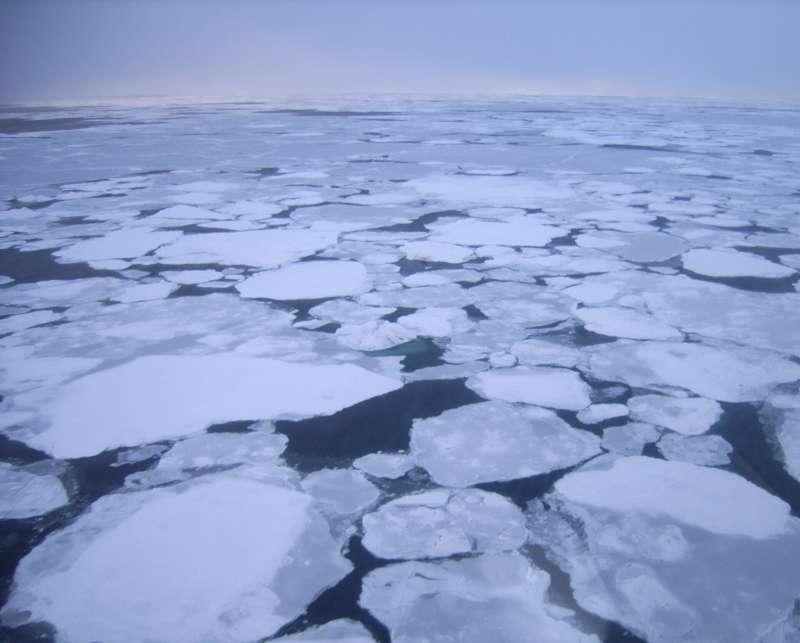 受北俄羅斯異常暖流、氣候變遷影響,拉普捷夫海面臨延遲結冰。(截自ESA官網)