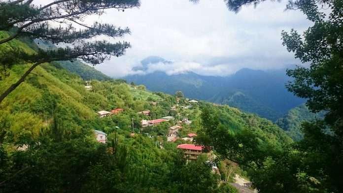 新竹景點-司馬庫斯部落。(圖/好野旅遊)