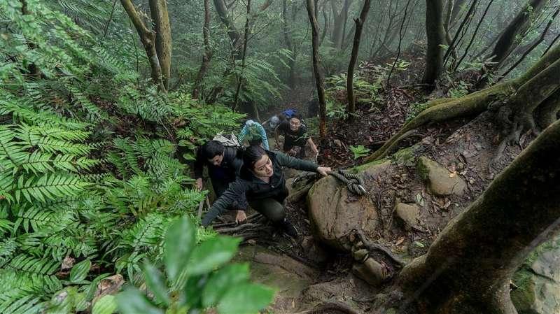 木柵猴山岳步道(圖/Tripbaa趣吧!自由行專家)