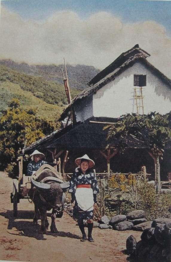 花蓮吉野村(取自維基百科)